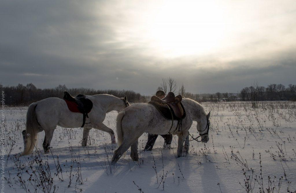 конный поход к голубому озеру